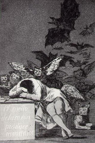 goya-sleep-reason.jpg