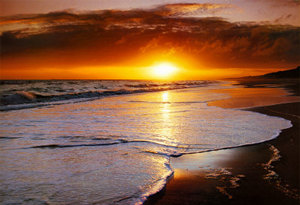 sunset-on-the-seashore-print-c10073218.jpg